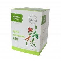 Garden serie Pyramide Spicy Moroccan Mint
